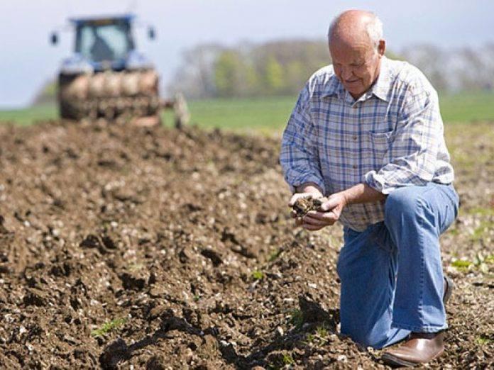 Юристи ЧУГУЇВСЬКОЇ ПРАВОЗАХИСНОЇ ГРУПИ відстояли інтереси Фермерського господарства проти Держгеокадастру