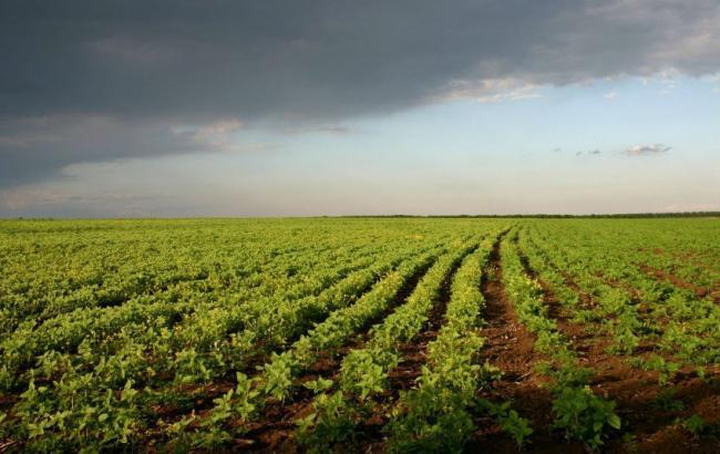 Юристи Ресурсного центру захищають права селян-власників земельних ділянок та земельних часток (паїв) в судах
