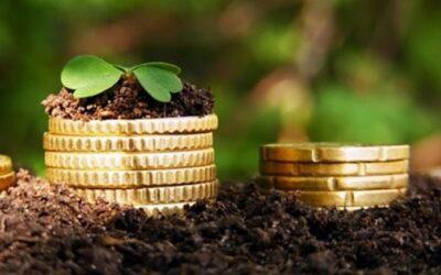 Товариство відшкодує майже 100 000 гривень за самовільне використання землі