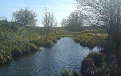 Звільнення захопленої земельної ділянки водоохоронної зони