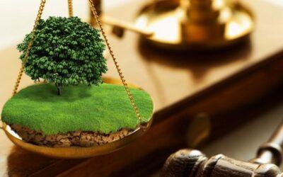 Засуджений за самовільне використання землі