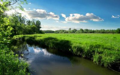 У Балаклійському районі виявлене можливе порушення водного законодавства