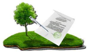Юрист Чугуївської правозахисної групи про те, як приватизувати земельну ділянку
