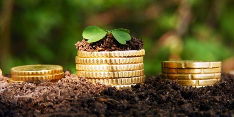 КСП «ПЕЧЕНІЗЬКИЙ» можуть незаконно використовують 114,8 Га без сплати орендної плати